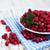 cranberries stock photo © es75
