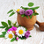 flores · silvestres · hierbas · madera · primavera · naturaleza · belleza - foto stock © Es75