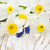 azul · jacinto · flores · vaso · isolado · branco - foto stock © es75