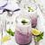 fruta · fresca · yogurt · cal · frutas - foto stock © es75