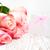 boş · kart · mesaj · pembe · güller · ahşap · kâğıt - stok fotoğraf © Es75