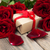 romantikus · rózsák · papír · szívek · csendélet · rózsaszín - stock fotó © es75