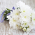 beyaz · krizantem · yalıtılmış · beyaz · arka · plan · çiçek · çiçekler - stok fotoğraf © es75