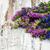 bouquet · bella · rosa · fiori · vecchio · legno - foto d'archivio © es75