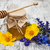 fantastisch · gouden · zonnestralen · hemel · bloem - stockfoto © es75
