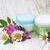 crema · flores · silvestres · trébol · blanco · naturaleza - foto stock © Es75