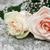 twee · bruiloft · vaas · steeg · natuur · ontwerp - stockfoto © es75