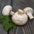 champignon · gomba · petrezselyem · levelek · izolált · fehér - stock fotó © es75