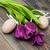 チューリップ · 花 · イースターエッグ · 春 · 孤立した - ストックフォト © es75