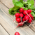 vers · radijs · vers · witte · groenten · landbouw - stockfoto © es75