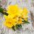 Geel · narcissen · bladeren · bos · bloemen · voorjaar - stockfoto © es75