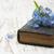 vecchia · carta · fiore · blu · natura · arte - foto d'archivio © es75
