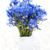vaso · velho · mesa · de · madeira · flor · folha · verão - foto stock © es75