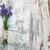 lavender flowers stock photo © es75