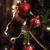 ガラス · ボール · 装飾 · クリスマスツリー · 雪 · フレーム - ストックフォト © es75