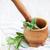 свежие · травы · продовольствие · природы · лист · кухне - Сток-фото © Es75