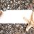 boş · kağıt · plaj · kumu · denizyıldızı · pint · yaz - stok fotoğraf © es75