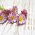 Ромашки · утра · необычный · красивой · цветок · семьи - Сток-фото © es75