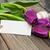 arte · Páscoa · cartao · ovos · papel · Primavera - foto stock © es75