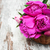 basket with pink peony stock photo © es75