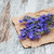 свежие · лаванды · цветы · границе · мало · ароматический - Сток-фото © es75
