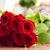 nagy · piros · rózsa · virágcsokor · gránit · virág · virágok - stock fotó © es75