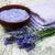 lavanda · fiori · natura · corpo - foto d'archivio © es75