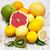 цитрусовые · плодов · овощей · пластина · изолированный · белый - Сток-фото © es75