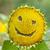 zonnebloem · geluk · portret · cute · vrouwelijke · tweelingen - stockfoto © escander81