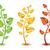 amarelo · verde · vermelho · plantas · três · crescente - foto stock © evetodew