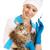 сиамские · кошки · инъекций · изолированный · белый · человека · врач - Сток-фото © evgenyatamanenko