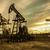 нефть · насос · закат · небе · промышленных · энергии - Сток-фото © EvgenyBashta