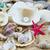 the exotic sea shell treasure from the sea stock photo © ewastudio