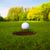 golfe · bola · copo · bonito · negócio · verde - foto stock © ewastudio