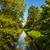 zomer · rivier · heldere · blauwe · hemel · wolken · voorjaar - stockfoto © ewastudio