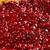 round piece cowberry stock photo © fanfo