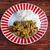 ягненка · блюдо · происхождение · один · подписи - Сток-фото © fanfo