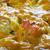 balık · sebze · yemek · yemek · sağlıklı - stok fotoğraf © fanfo