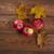 sonbahar · sınır · elma · yaprakları · akçaağaç · eski - stok fotoğraf © fanfo