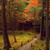старые · клен · дерево · Японский · саду · красный - Сток-фото © fatalsweets