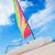 катамаран · парусника · парусного · синий · океана · воды - Сток-фото © feedough