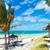spiaggia · paradiso · palme · bella · scena · acqua - foto d'archivio © feedough