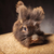 peloso · leone · testa · coniglio · coniglio · legno - foto d'archivio © feedough