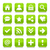 green basic sign rounded square icon web button stock photo © feelisgood