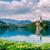 Панорама · озеро · Словения · один · красивой - Сток-фото © fesus
