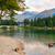 lake bohinj stock photo © fesus