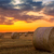 zonsondergang · boerderij · veld · hooi · foto - stockfoto © Fesus