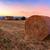 日没 · ファーム · フィールド · 乾草 · 空 · 風景 - ストックフォト © Fesus