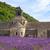 abdij · Frankrijk · veld · kerk · reizen · architectuur - stockfoto © fesus