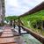 ahşap · turist · yol · park · su · ağaç - stok fotoğraf © fesus